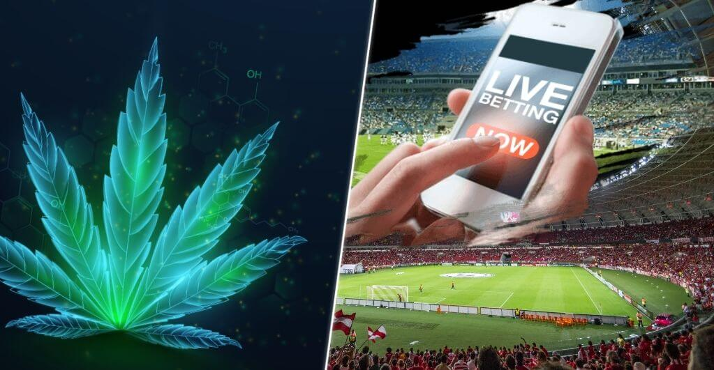 Tax Revenues From Cannabis Set to Take a Hit With Mobile Sports Betting Taking the Lead in New York State